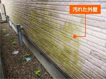 苔で汚れた外壁