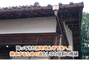 を地上や下水へと排水するための道としての役割の雨樋