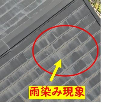 カラーベスト屋根点検