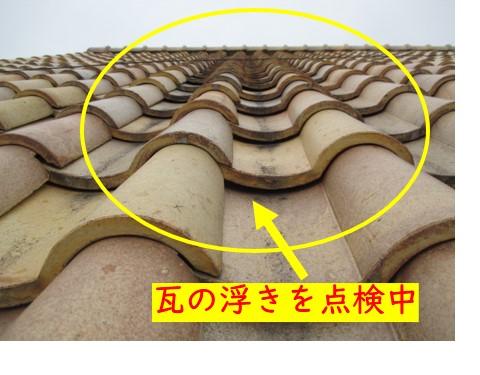 屋根点検作業