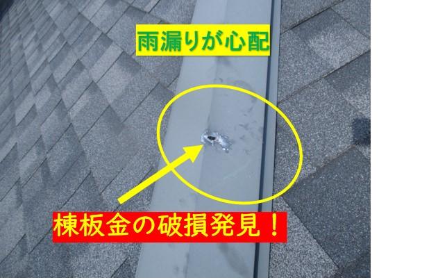 カラーベスト屋根点検開始