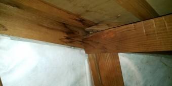 西宮市天井裏木材雨漏れ被害