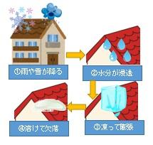 凍害の原因