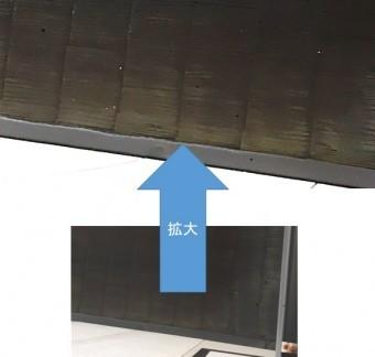 屋根にコケが出現
