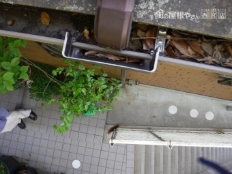 F様雨樋詰り清掃2