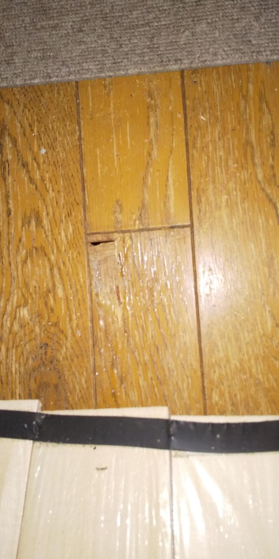 西宮市木造二階建て住宅雨漏れ被害フローリング腐食