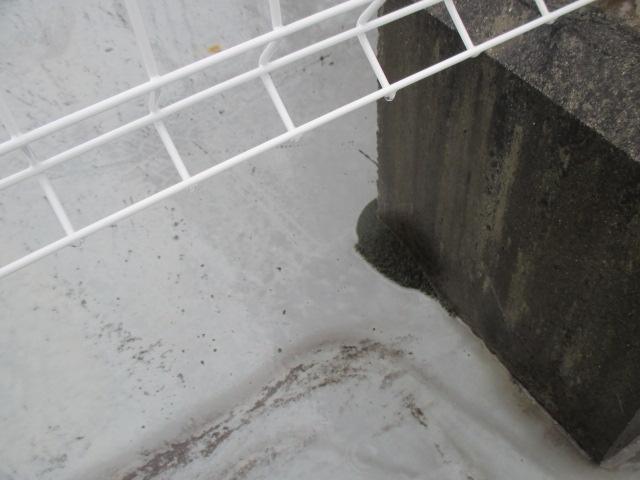 尼崎市店舗ビル屋上陸屋根防水劣化でコケ発生