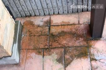 カーポート雨漏り3