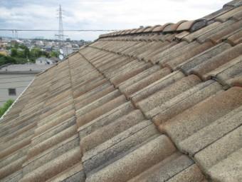 屋根全体の模様