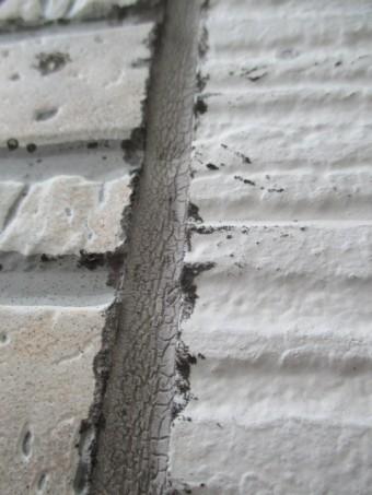 西宮市窯業系サイディング壁目地コケ付着