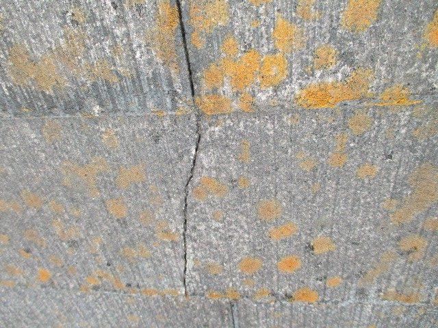 西宮市築20年以上経過カラーベスト屋根の劣化によるこけ発生
