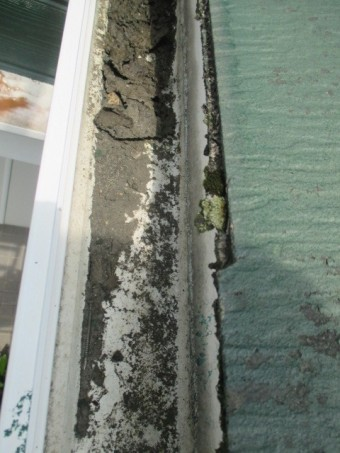 宝塚市築20年ほど経過しているカラーベスト屋根に付着しているこけ