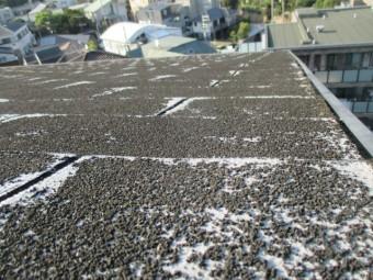 西宮市アスファルトシングル材表面の砂粒が劣化でポロポロ取れてきている