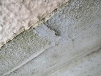 西宮市木造住宅屋上のベランダ傷んで色あせ