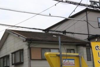 O様邸屋根カバー工事調査1