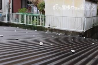 テラス屋根修理3