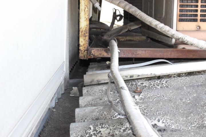 作業場屋根調査5