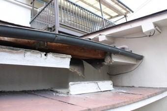 屋根軒天修理下見1