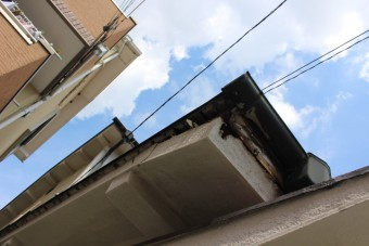 屋根軒天修理下見2