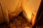 外壁雨漏り調査1