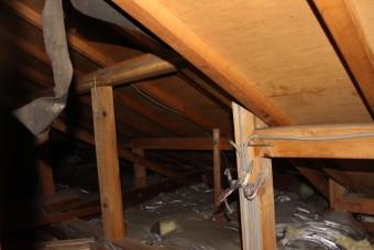 西宮屋根修理現場調査5