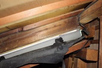西宮屋根修理現場調査7