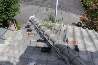 雨漏り軒天修理現場調査3