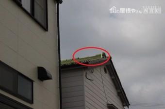 宝塚市瓦落下現場2