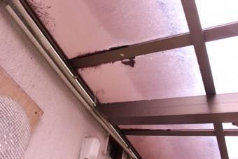 カーポート屋根修理5