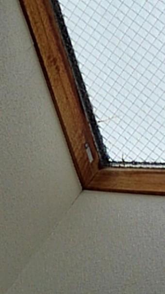 天窓ガラス交換現場調査5