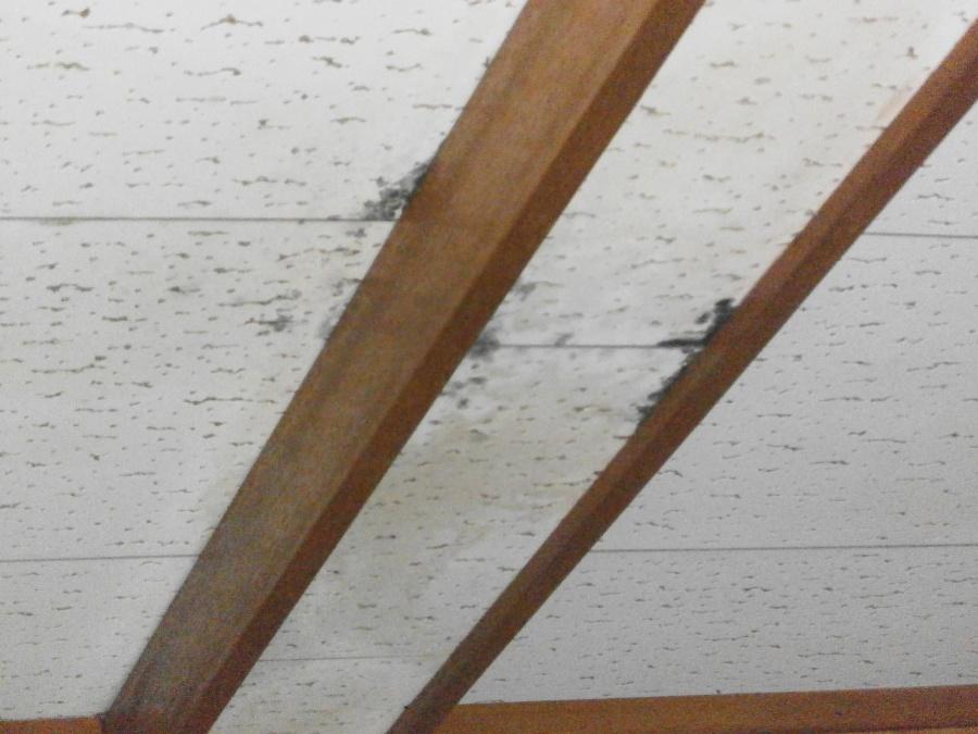 母屋、瓦屋根の雨漏りの下見に伺いました。西宮市