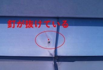 西宮市 屋根材釘抜き