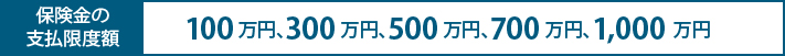 最高1,000 万円